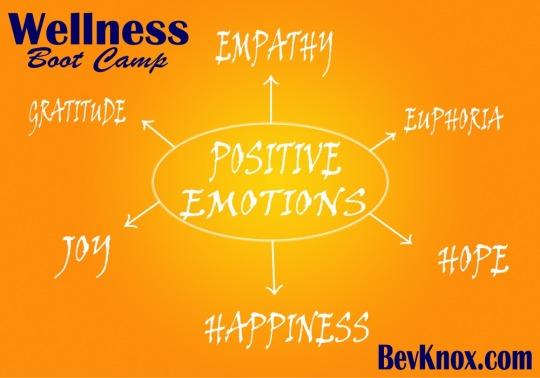 Wellness Positive 1000